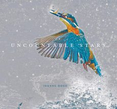 Joanne Hogg - Uncountable Stars - CD Cover